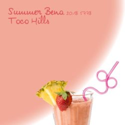 summer-bena-toco-graphic-5778